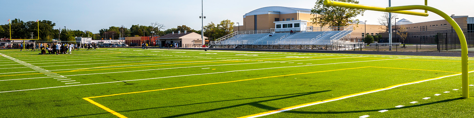DPS Finney Synthetic Field